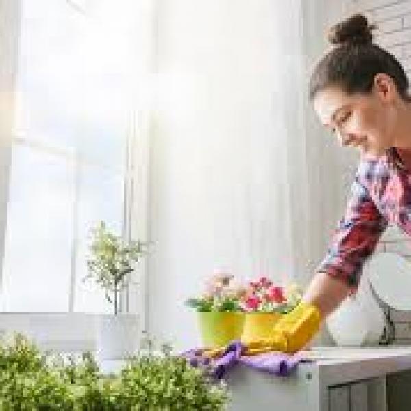 vente Entretien et soin de la maison discount
